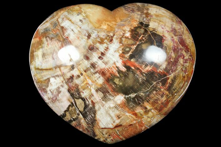 "Large, 9"" Polished, Triassic Petrified Wood Heart - Madagascar"