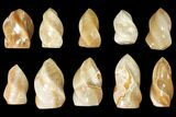 "Wholesale Lot: 3-5"" Polished Calcite ""Flames"" - 10 Pieces - #133862-1"