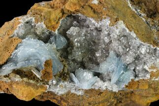 "Buy 8.2"" Blue Bladed Barite Crystal Clusters with Calcite   - Morocco - #134935"
