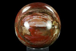 "Buy 5.1"" Colorful, Petrified Wood Sphere - Madagascar - #135322"