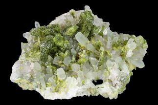 "Buy 2.4"" Lustrous Epidote On Quartz Crystals - Morocco - #135874"