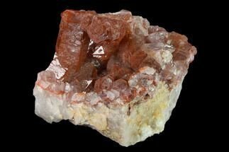 "2.8"" Natural Red Quartz Crystal Cluster - Morocco For Sale, #135695"