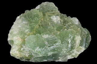 Fluorite  - Fossils For Sale - #136875