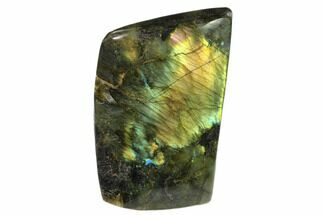 "Buy 4.9"" Flashy Polished Labradorite Free Form - Madagascar - #136255"