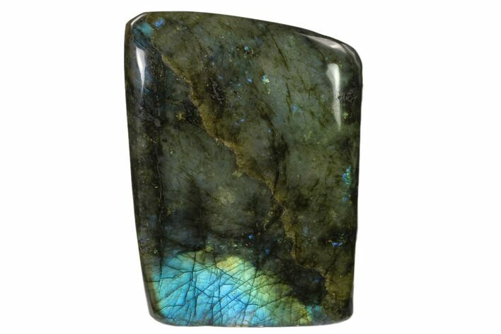 "4.6"" Flashy Polished Labradorite Free Form - Madagascar"