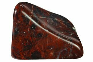"Buy 1.6"" Polished Stromatolite (Collenia) - Minnesota - #136909"