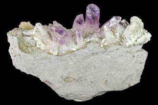 Quartz var. Amethyst - Fossils For Sale - #137007