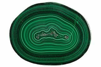 "2.05"" Polished Malachite Stalactite Slice - Congo For Sale, #137054"