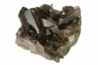 "Buy 2.3"" Dark Smoky Quartz Crystal Cluster - Brazil - #134947"