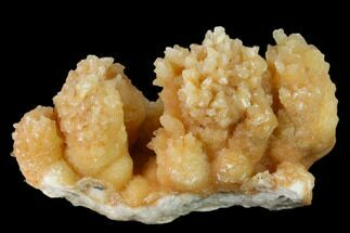 Calcite - Fossils For Sale - #137373