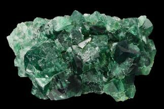 Fluorite  - Fossils For Sale - #134784