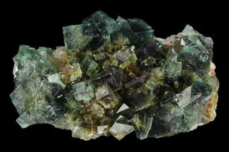 "Buy 3.6"" Fluorite Crystal Cluster on Quartz -  Rogerley Mine - #134785"