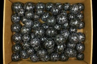 "Wholesale Lot: 63 Indigo Gabbro Spheres - 1.5 - 2.2"" For Sale, #137957"
