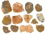 Wholesale Lot - Pink and Orange Bladed Barite - 27 Pieces - Morocco - #138054-1