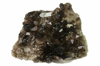 "4.5"" Dark Smoky Quartz Crystal Cluster - Brazil For Sale, #137834"