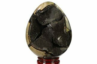 "Buy 5.2"" Septarian ""Dragon Egg"" Geode - Black Crystals - #137905"