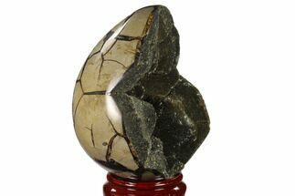 "6.3"" Septarian ""Dragon Egg"" Geode - Black Crystals For Sale, #137909"