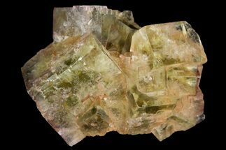 "Buy 1.8"" Light-Green, Cubic Fluorite Crystal Cluster - Morocco - #138238"
