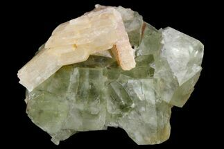 Fluorite & Barite - Fossils For Sale - #138243