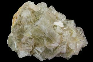 Fluorite - Fossils For Sale - #138246