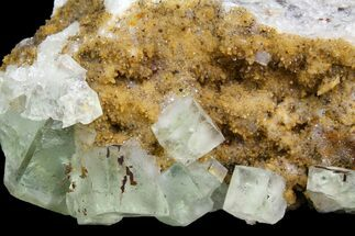 Fluorite & Quartz - Fossils For Sale - #138249