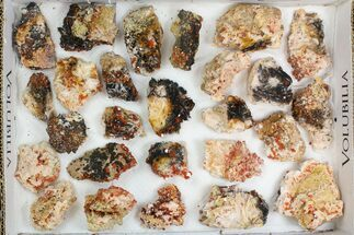 "Buy Lot: 1.5 - 2.5"" Bladed Barite With Vanadinite - 26 Pieces - #138193"