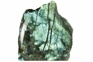 "7.9"" Tall, Single Side Polished Labradorite - Madagascar For Sale, #135803"