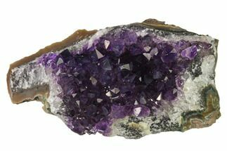 "Buy 3.9"" Dark Purple, Amethyst Crystal Cluster - Uruguay - #139480"