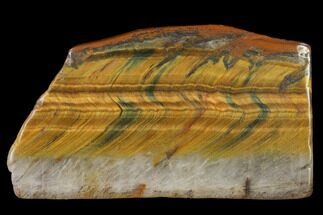 "Buy 2.5"" Polished Tiger's Eye Slab - South Africa - #140518"
