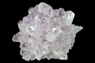 "1.7"" Amethyst Rosette - Artigas, Uruguay For Sale, #141905"