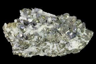 "3.4"" Chalcopyrite, Pyrite, Galena and Quartz Association - Peru For Sale, #141830"