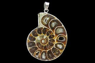 "Buy 1.7"" Fossil Ammonite Pendant - 110 Million Years Old - #142897"