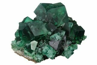 Fluorite & Galena - Fossils For Sale - #143046