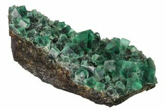 Fluorite  - Fossils For Sale - #143076