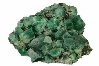"Buy 2.7"" Fluorite Crystal Cluster -  Rogerley Mine - #143059"