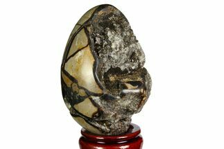 "4.25"" Septarian ""Dragon Egg"" Geode - Barite Crystals For Sale, #143144"