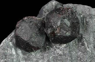 Two, Large Red Embers Garnet in Graphite - Massachusetts For Sale, #135482