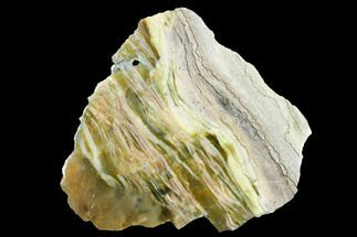 "5.4"" Chatoyant, Polished Pietersite Section - Arizona For Sale, #146438"