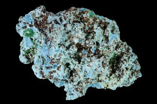 "Buy 1.6"" Light-Blue Shattuckite with Malachite - Tantara Mine, Congo - #146713"