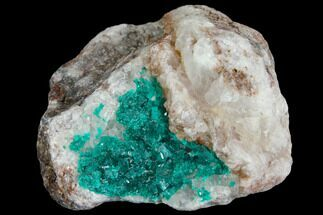 "1.9"" Dioptase and Calcite Association - Tantara Mine, Congo For Sale, #146735"