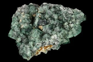 "2.45"" Fluorite Crystal Cluster - Rogerley Mine For Sale, #146252"