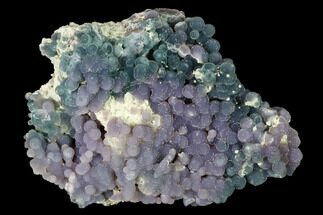 "Buy 3.3"" Purple and Green, Sparkly Botryoidal Grape Agate - Indonesia - #146866"