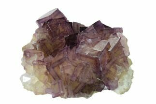 Fluorite, Pyrite & Quartz - Fossils For Sale - #148194