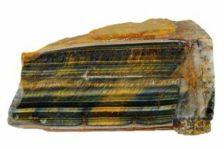 "Buy 4"" Polished Tiger's Eye Section - South Africa - #148261"
