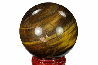 "Buy 1.9"" Polished Tiger's Eye Sphere - #148879"