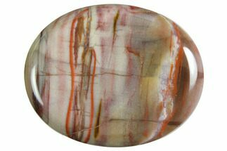Polished Petrified Wood Worry Stones For Sale, #150320
