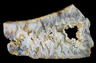 "8.7"" Graveyard Plume Agate Slab - Eastern Oregon For Sale, #150518"