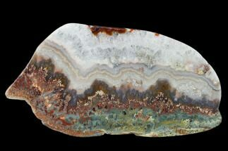 "Buy 6.6"" Polished Prudent Man Plume Agate Slab - Idaho - #150544"
