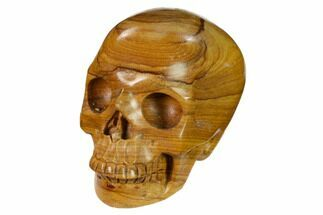 "Buy 3"" Realistic, Polished Picture Jasper Skull  - #151159"