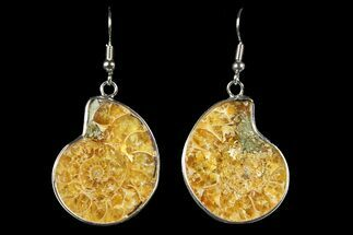 Fossil Ammonite Earrings - 110 Million Years Old For Sale, #152015